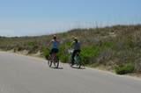 11 Black Skimmer Trail - Photo 8