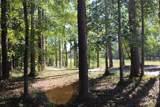 4551 Moss Bend - Photo 10