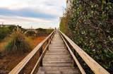 113 Marsh Walk - Photo 4