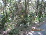 11 Sabal Palm Trail - Photo 4