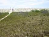 5223 Beach Drive - Photo 1