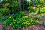 112 Meadow View Drive - Photo 22