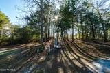 10199 Corree Cove Drive - Photo 4