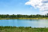 5293 Barcroft Lake Drive - Photo 2