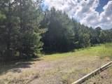 0 Dewey Hardison Road - Photo 1