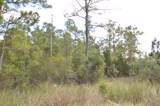 Tract 4 Pasture Point - Photo 1