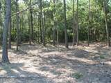 Tract 4 Pasture Point - Photo 6