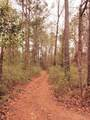 1601 Poplar Branch Trail - Photo 4