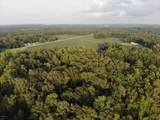 Lot 4 State Rd 1111 Off - Photo 16