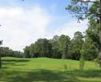 1601 Amberwood Drive - Photo 1