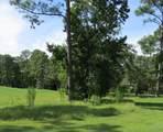 1601 Amberwood Drive - Photo 2