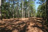 235 Peterson Creek Road - Photo 8
