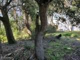 1512 Bowfin Lane - Photo 3