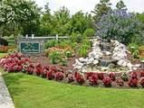 1556 Grandiflora Drive - Photo 100