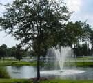 1556 Grandiflora Drive - Photo 97
