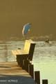 722 Bay Harbor Drive - Photo 48