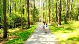 315 Bright Leaf Drive - Photo 19