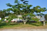 612 Harkers Island Road - Photo 2