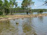 Tract 4 Pasture Point - Photo 3
