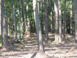 Tract 4 Pasture Point - Photo 4