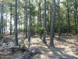 Tract 4 Pasture Point - Photo 5