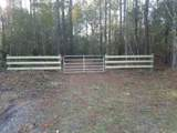 Lot 2 Old Maple Hill Road - Photo 1