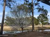 1333 Grandiflora Drive - Photo 38