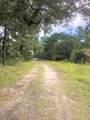3085 Woodthrush Lane - Photo 2