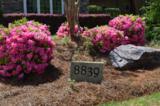 8839 Carenden Court - Photo 5