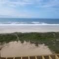 223 Ocean Breeze Drive - Photo 63