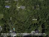 Lot 167 Baby Doe Circle - Photo 10