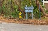 20 Bay Tree Trail - Photo 25