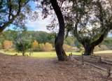 20 Bay Tree Trail - Photo 27