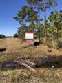 50.83 Acres Off Hwy 211 - Photo 4