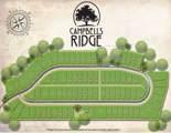 6752 Campbells Ridge Drive - Photo 3