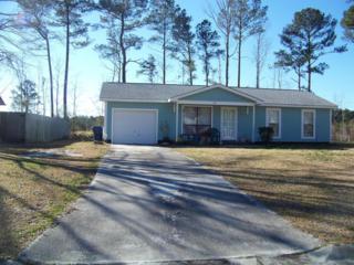 327 Tallpine Road, Havelock, NC 28532 (MLS #100002586) :: Century 21 Sweyer & Associates