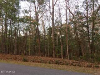 Lot 140 N Line Drive, Hampstead, NC 28443 (MLS #100005705) :: Century 21 Sweyer & Associates