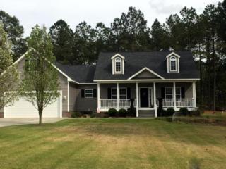410 Old Tom Morris Road, Garland, NC 28441 (MLS #100007476) :: Century 21 Sweyer & Associates