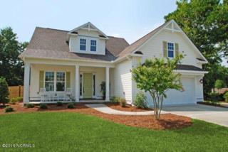 41 Dovecote Avenue, Wilmington, NC 28409 (MLS #100007629) :: Century 21 Sweyer & Associates
