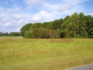 1250 Elmos Lane, Williamston, NC 27982 (MLS #100008042) :: Century 21 Sweyer & Associates