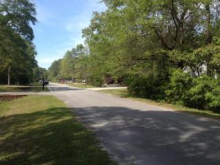 1567 Horse Branch Road SW, Ocean Isle Beach, NC 28469 (MLS #100009920) :: Century 21 Sweyer & Associates