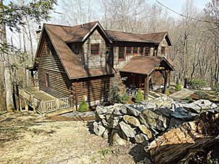 875 Eagles Nest Trail, Banner Elk, NC 28604 (MLS #100010165) :: Century 21 Sweyer & Associates