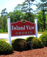 212 Island View Drive, Newport, NC 28570 (MLS #100012858) :: Century 21 Sweyer & Associates
