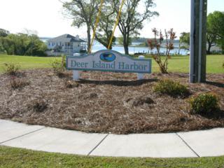 107 Bridgeview Lane, Swansboro, NC 28584 (MLS #100013232) :: Century 21 Sweyer & Associates
