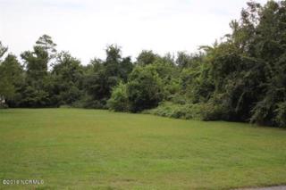157 Leslie Drive, Hubert, NC 28539 (MLS #100014005) :: Century 21 Sweyer & Associates