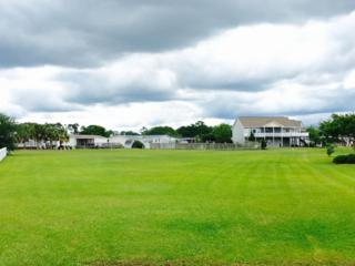 308 Lobinger Court, Newport, NC 28570 (MLS #100014290) :: Century 21 Sweyer & Associates