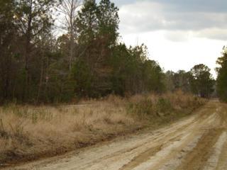 4 Sawdust Trail SE, Winnabow, NC 28479 (MLS #100014622) :: Century 21 Sweyer & Associates