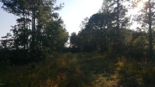 239 George II Highway SE, Winnabow, NC 28479 (MLS #100015008) :: Century 21 Sweyer & Associates