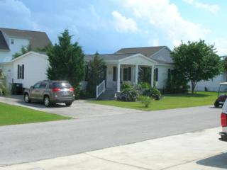 107 Blue Goose Lane, Newport, NC 28570 (MLS #100017369) :: Century 21 Sweyer & Associates