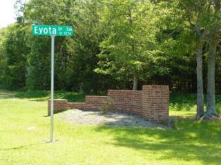 1527 Eyota Drive SW, Ocean Isle Beach, NC 28469 (MLS #100017718) :: Century 21 Sweyer & Associates